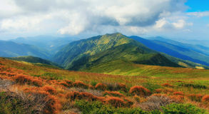 Mountain landscape in summer. Panoramic view of summer landscape in mountains Stock Photos