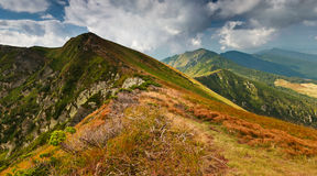 Mountain landscape in summer. Panoramic view of summer landscape in mountains Royalty Free Stock Photo