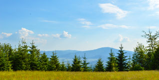 Mountain landscape. Summer in Poland Stock Photography