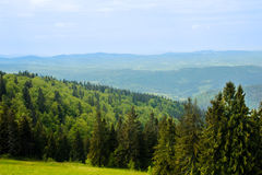 Mountain landscape in summer Stock Image