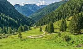 Mountain landscape. Summer view of the Rabbi Valley, Trentino Alto Adige, Italy Stock Photos
