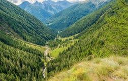 Mountain landscape. Summer view of the Rabbi Valley, Trentino Alto Adige, Italy Royalty Free Stock Photo