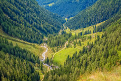 Mountain landscape. Summer view of the Rabbi Valley, Trentino Alto Adige, Italy Royalty Free Stock Photography