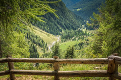 Mountain landscape. Summer view of the Rabbi Valley, Trentino Alto Adige, Italy Royalty Free Stock Image