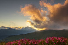 Mountain landscape. Sunrise in Carpathians - Transalpina road Stock Photography