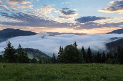 Mountain landscape. Sunrise in the clouds. Dense fog with nice soft light. On the lawn the grass and flowers in dew. Forest with green trees. Tourist resort Stock Images