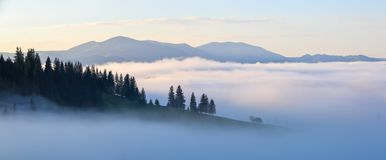 Mountain landscape. Sunrise in the clouds. Dense fog with nice soft light. A nice summer day. Panoramic view stock images