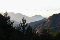 Mountain landscape at sunrise, Corse, France. Stock Images