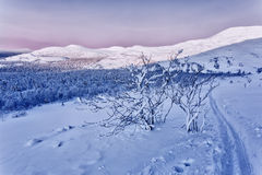 Mountain landscape at sunset. Photo of a ski trip to the Ural mountains. Main Ural ridge. Sunset sky in pink. mountain range and forest in the background, which Royalty Free Stock Photography