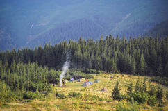 Mountain landscape at sunshine. Tourist tents in forest Royalty Free Stock Photos