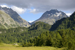 Mountain landscape in switzerland alps. High peaks forest and green pasture Royalty Free Stock Photos