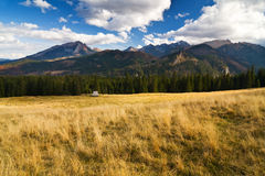 Mountain landscape, Tatry. Eeriness mountain landscape, Tatry, Poland royalty free stock images