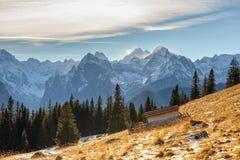 Mountain landscape, Tatry, Poland. Autumn mountain landscape, Tatry, Poland royalty free stock images