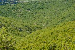 Mountain landscape. Royalty Free Stock Photo