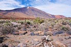 National Park of Teide Stock Photo