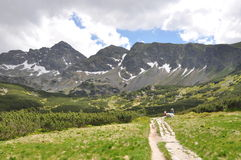 Mountain Landscape Trail Stock Photos