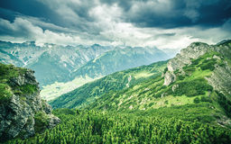 Mountain landscape with trail, green meadow and forest Stock Images