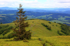 Mountain landscape. Trail in the mountains. Stock Photos