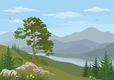 Mountain landscape with tree Stock Image