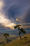 Mountain landscape with tree and dramatic clouds Stock Photography