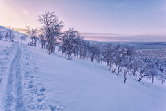 Mountain landscape with trees at sunset, Ural mountains. During a ski trip in the Urals, the sunset in the Ural mountains. trails in the foreground, the group Royalty Free Stock Images