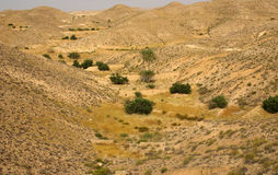 Mountain landscape in Tunisia, Africa Royalty Free Stock Photos