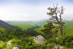 Mountain landscape. Valley view. royalty free stock photo
