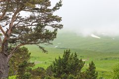 Mountain landscape. Caucasus nature. Lago-Naki, Russia, Europe royalty free stock photos