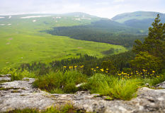 Mountain landscape. Valley view. Stock Image