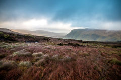 Mountain Landscape. Wicklow Mountains, County Wicklow, Ireland Royalty Free Stock Images
