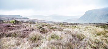 Mountain Landscape. Wicklow Mountains, County Wicklow, Ireland Stock Photos