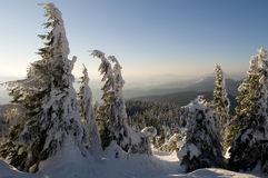 Mountain landscape in winter Royalty Free Stock Image
