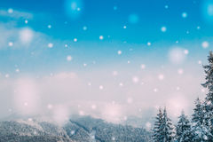 Mountain landscape in winter. Christmas card Royalty Free Stock Photos