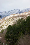 Mountain landscape. In winter time Royalty Free Stock Image