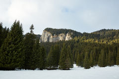 Mountain landscape on wintertime Royalty Free Stock Photography