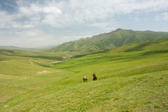 Mountain Landscape With Green Grass Valley And Riders On Horseback Royalty Free Stock Photography