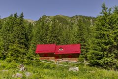 Mountain landscape with wooden mountain chalet near pine tree fores under the peak. Mountain chalet close to Moldoveanu the highest peak  in the Romanian Royalty Free Stock Photos