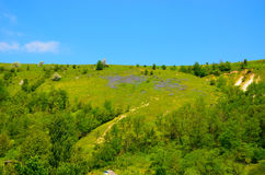Mountain landscape with yellow and violet flowers Stock Photos