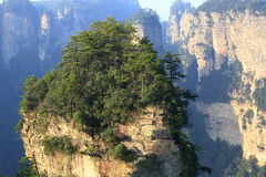 Mountain landscape of zhangjiajie Stock Photos