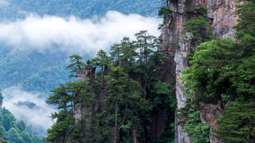 Mountain landscape of Zhangjiajie national park Royalty Free Stock Photography