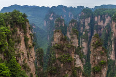 Mountain landscape of Zhangjiajie national park Stock Photography