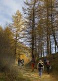 Mountain Landscapes Stock Photos