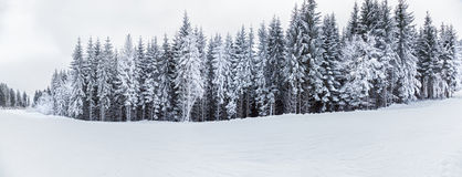 Mountain landscapes and panoramas of snow-capped mountain peaks Stock Images