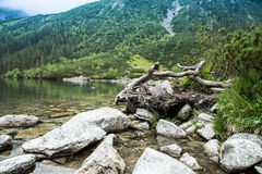 Mountain lanscape with lake. Mountain lanscape with blue lake Royalty Free Stock Photography