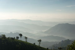 Mountain layers. Layers on mountains and tea plantation in Munnar, Kerala Royalty Free Stock Images