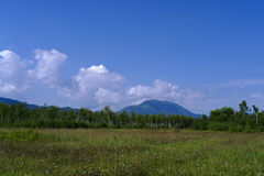Mountain Ledyanaya (Sakhalin McKinley) in August Royalty Free Stock Image