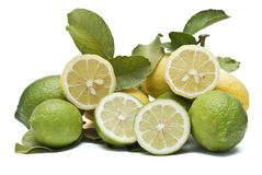 A mountain of lemons. Stock Photography