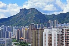 Mountain lion rock in Hong Kong city Royalty Free Stock Images