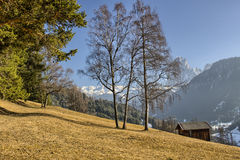 Mountain lodge in valley of pine forests and snow-capped peaks i Royalty Free Stock Images