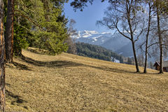 Mountain lodge in valley of pine forests and snow-capped peaks i Royalty Free Stock Photo